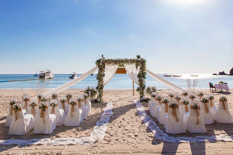 wedding-web